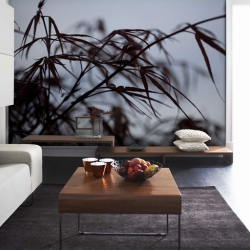 fototapety-decor-maison-30