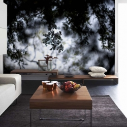 fototapety-decor-maison-8
